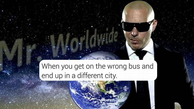 Pitbull memes