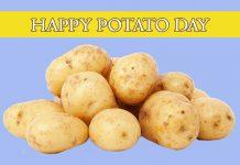 Best Potato Memes